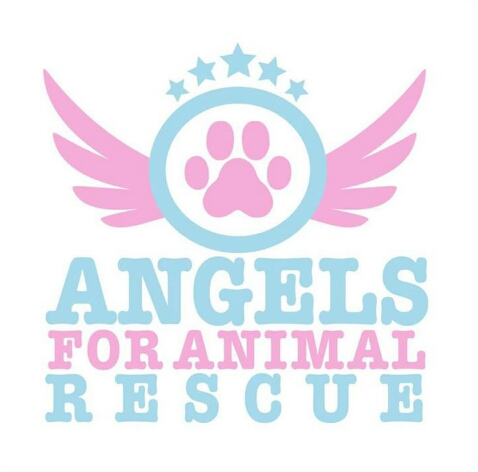 Angels for Animals Rescue Teacup Tutu Charm